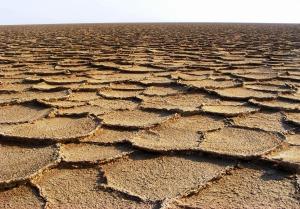 desert-736096_1920