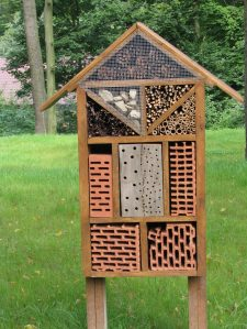 insect-house-1085197_1920